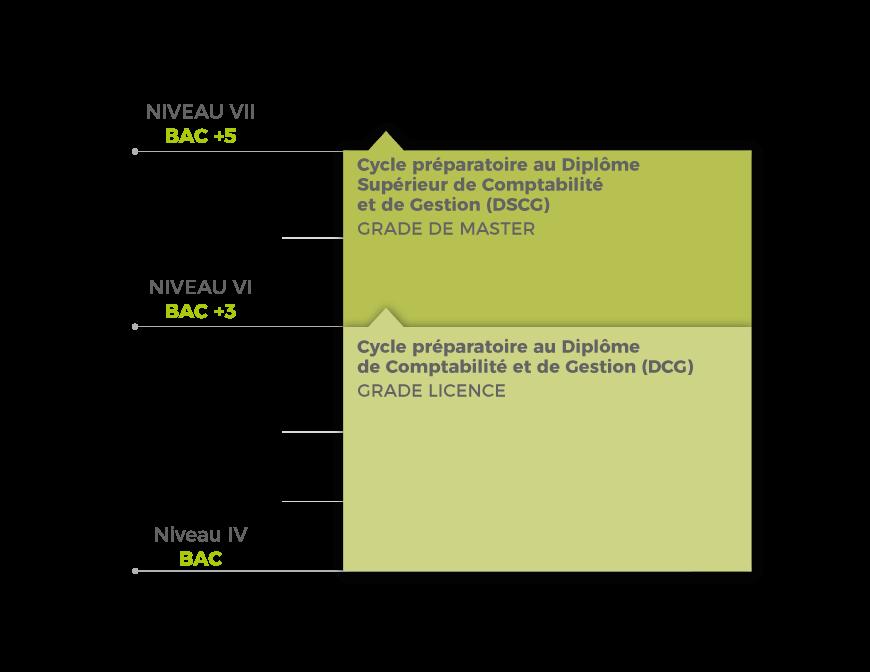 Schéma filière - Expertise Comptable
